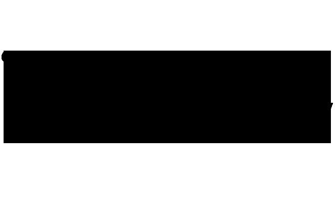 Budgetry Logo